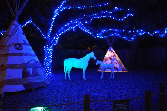 Zoo Lights At The Houston Zoo!   Join Bayou City Outdoors, Houstonu0027s Social  Club For Local Events, The Outdoors And Adventure